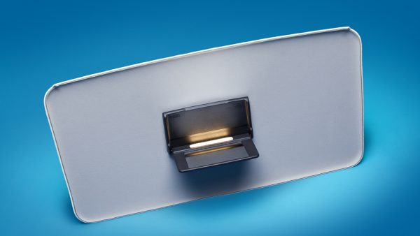 Vanity Mirror-Domelight with Dual LED
